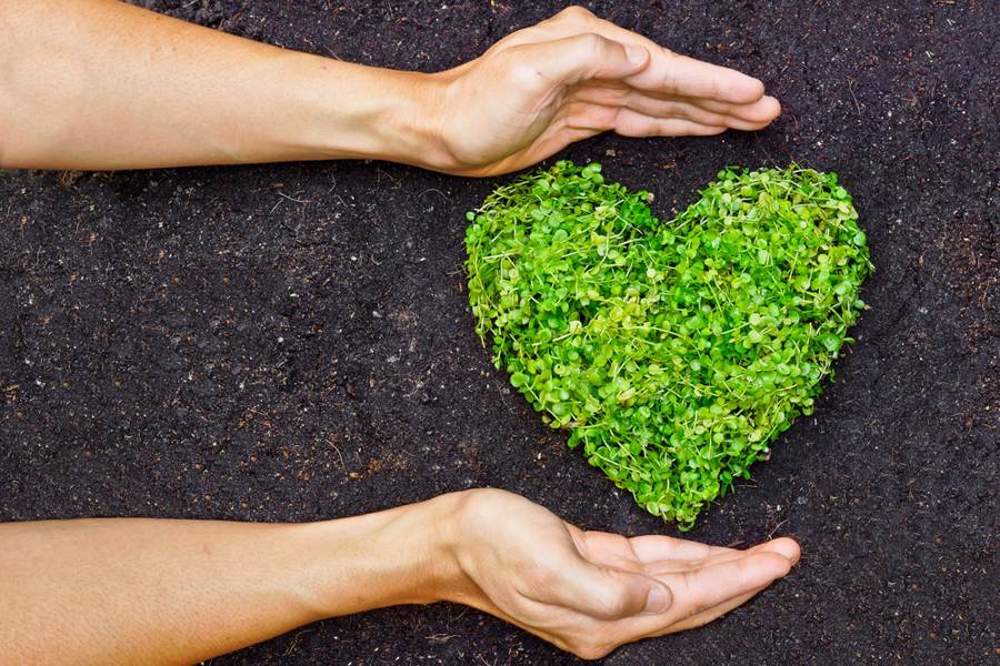 Heart made out of fresh greens - Manduka yoga environmental policy