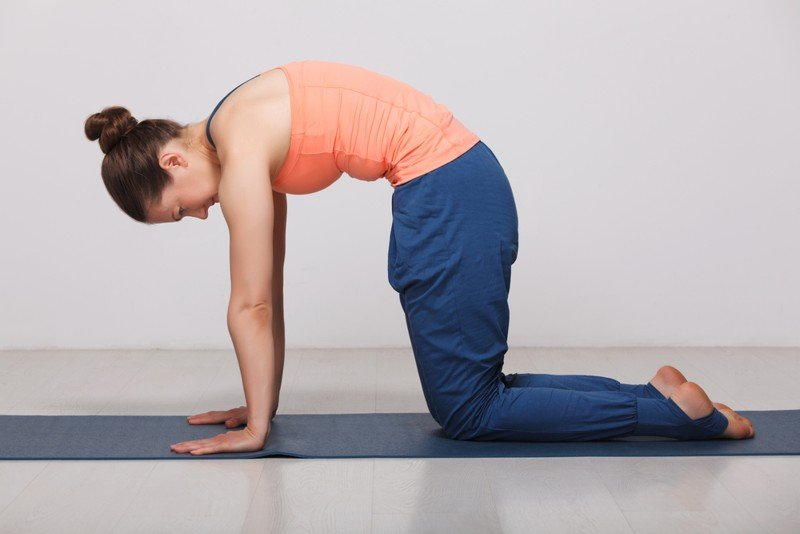 cat pose in yoga - yoga posture for relaxation